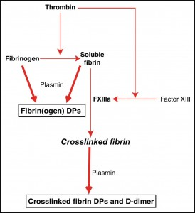Fibrinolytic pathway tests measure of clot breakdown products, FDPs and D-dimer