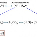 Titration acidosis